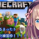 鈴原るるの【Minecraft(マインクラフト)】おはるる!まったりマイクラゲリラ練習わくわく…!![2019/10/20]