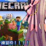 鈴原るるの【Minecraft(マインクラフト)】マイクラゲリラ練習わくわく…!![2019/10/24]