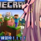 鈴原るるの【Minecraft(マインクラフト)】マイクラゲリラ練習わくわく…ひまちゃんにいいところ見せたいッ!![2019/10/27]
