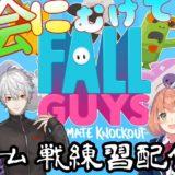 Fall Guys0923